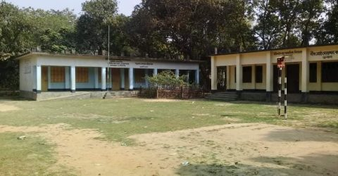 বিজয়নগরে ভিডি দাউদপুর সরকারি প্রাথমিক বিদ্যালয় চলছে শিক্ষকের  ইচ্ছেমতো